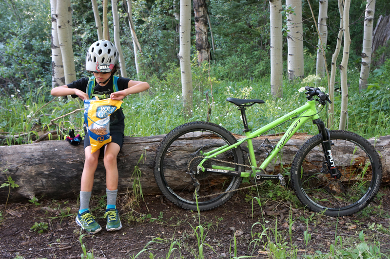 b9f2d61c76f Bikes, Gear Reviews / Tested: Trailcraft Pineridge 24 Pro Kids Bike ...
