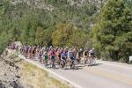 The peloton climbs towards Andersons Vista KOM with United Health Care setting tempo..