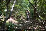 Mark Taylor rallies down the Pilot Rock singletrack.