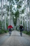 Craig Stappler (L) and Ollie Whalley roll through Aspen Alley in southern Wyoming before sunrise.